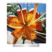 Lily Flower Artwork Orange Lilies 3 Giclee Art Prints Baslee Troutman Shower Curtain