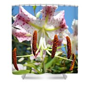Lily Flower Close Up Macro Pink Lilies Blue Sky Baslee Shower Curtain