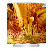 Lily Flower Macro Orange Lilies Floral Art Print Baslee Troutman Shower Curtain