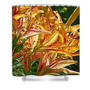 Lily Flowers Floral Garden Prints Baslee Troutman Shower Curtain