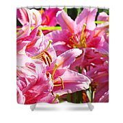 Lily Garden Floral Art Prints Pink Lilies Baslee Troutman Shower Curtain