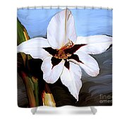 Lily I Shower Curtain