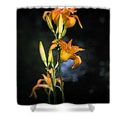 Lily In Monets Garden Shower Curtain