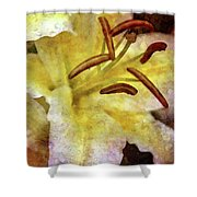 Lily In The Rain 1799 Idp_2 Shower Curtain