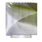 Lily Light And Shadow Shower Curtain