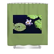 Lily Love II Shower Curtain