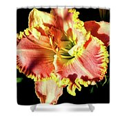 Lily Magic Shower Curtain