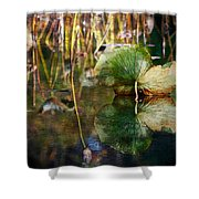 Lily Pad Reflection Oil Shower Curtain