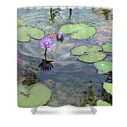 Lily Pads And Koi 1 Shower Curtain