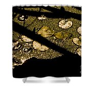 Lily Pads And Shadows Shower Curtain