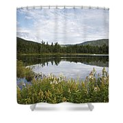 Lily Pond - White Mountains New Hampshire Usa Shower Curtain
