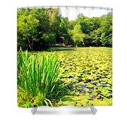 Lily Pond #4 Shower Curtain