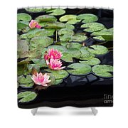 Lily Pond Monet Shower Curtain