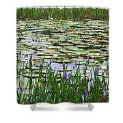 Lily Pond Panorama Shower Curtain