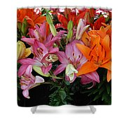 Lily Radiance Shower Curtain