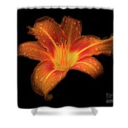 Lily Raindrops In Giverny, France Shower Curtain