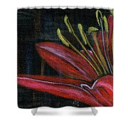 Lily Red Shower Curtain