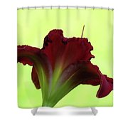 Lily Red On Yellow Green - Daylily Shower Curtain