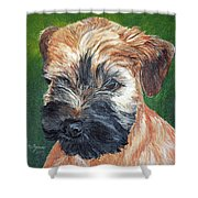 Lily, Soft Coated Wheaten Puppy Shower Curtain