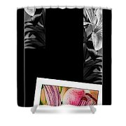 Lily Wall Decor Shower Curtain