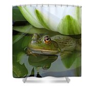 Lilyfrog - Frog With Water Lily Shower Curtain