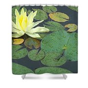 Lilypad Shower Curtain