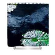 Lilypads And Sky Reflections Shower Curtain