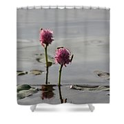 Lilypads And Wasps Shower Curtain