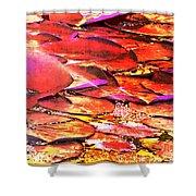 Crimson Lilypads Floating.. Shower Curtain