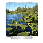 Lilypads On Amber Lake Shower Curtain