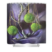 Lime And Violet In Harmony Shower Curtain