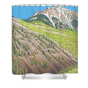 Lime Creek Canyon Shower Curtain
