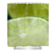 Lime Cut Shower Curtain