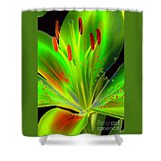 Lime Twist Shower Curtain