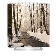 Limentra In Winter Shower Curtain