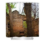 Limestone Relic Shower Curtain
