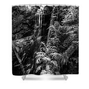 Limited And Restricted Shower Curtain
