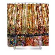Limited Display Shower Curtain