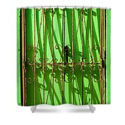 Limon Puerta Shower Curtain
