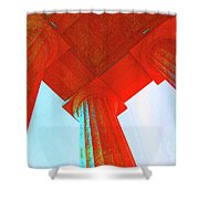 Lincoln Colomn Red Shower Curtain