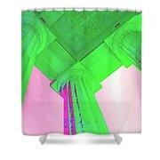 Lincoln Column Green Shower Curtain