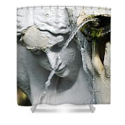 Lincoln Park Conservatory Fountain Shower Curtain