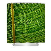 Lincoln Park Conservatory Palm Shower Curtain