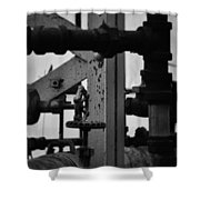 Lincoln Park Conservatory Water Works Shower Curtain