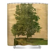 Linden Tree On A Bastion 1494 Shower Curtain