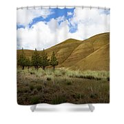 Line Of Trees At Painted Hills Shower Curtain