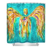 Lines Of Color In The Sky Shower Curtain