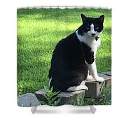 Lingering Lucy Shower Curtain