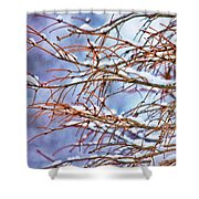 Lingering Winter Snow Shower Curtain