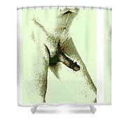 Lingham Shower Curtain